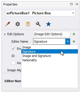 EForm-Signature-content-editing